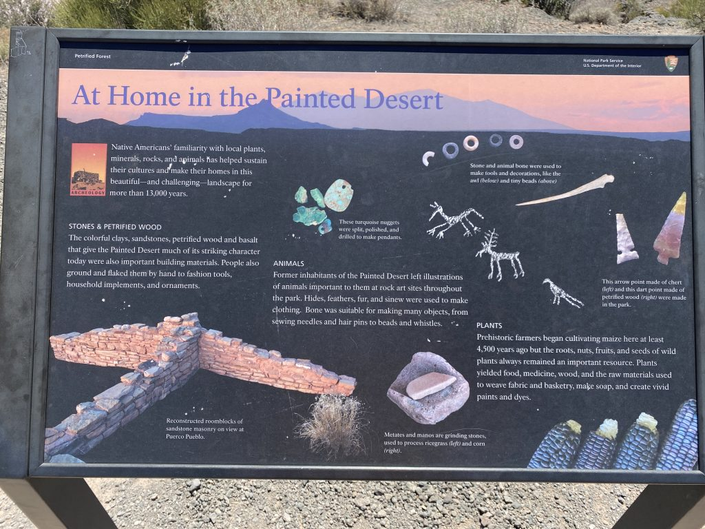 At Home in the Painted Desert
